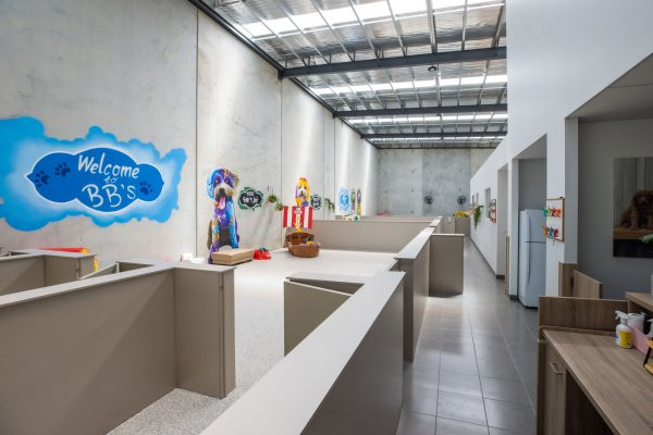 BBS DOGGY DAYCARE FACILITY IMAGES-11