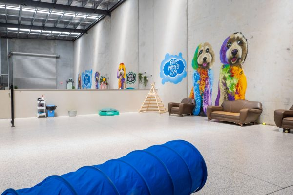 BBS DOGGY DAYCARE FACILITY IMAGES-4