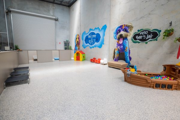 BBS DOGGY DAYCARE FACILITY IMAGES-9